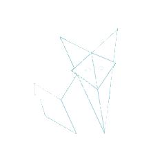 ecommerce-fox